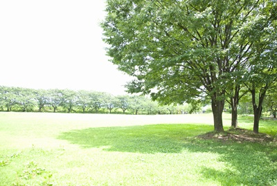 http://d4w9i1j5cm7ll.cloudfront.net/o/C001/magazine/news/news3/n4970-4.jpg