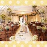 大阪/会費制/結婚式