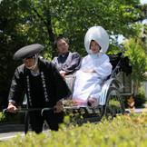 新緑の参道を進み挙式場のに乃木神社へ