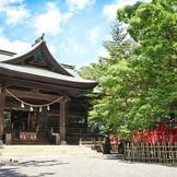 1100年の歴史を誇る浜松八幡宮。 そばにはクスノキクラブの由来となった天然記念物「雲立ち楠」が見守ります。