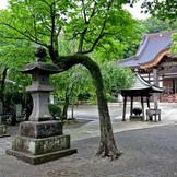 *慶応の大火の後、関東大震災を経て再建された本堂。粱には龍や鳳凰などの彫刻が施されています