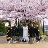 満開の桜をバックに家族写真も撮影できます