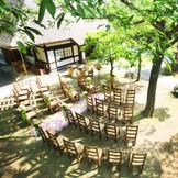 『ガーデン挙式』  神聖で愛と平和の 象徴でもある どんぐりの木がたくさん見守る