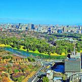 地上37階。東京を一望するウエディングが叶う。
