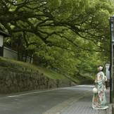 京都東山の街並みに溶け込む外観