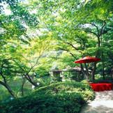約300年の歴史がある庭園でゲストも喜ぶ。