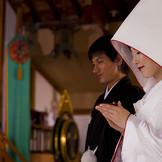 雅楽の生演奏がながれる中での三三九度の盃や誓詞奏上…日本ならではの伝統美に彩られた婚礼儀式の数々