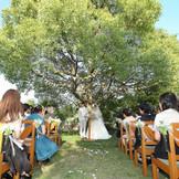 ガーデンでの人前式 シンボルツリー