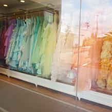 発色のいいドレスが充実