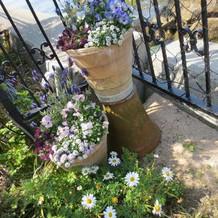 あちこちお花が植えてあります。