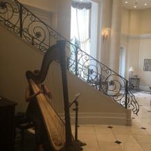 入口のハープ演奏