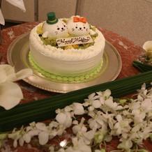 緑に白のあざらしのケーキ