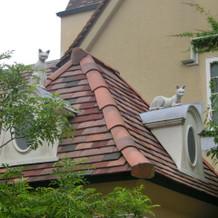 ガーデンから見える屋根の上の猫達