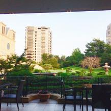 建物内から見たお庭