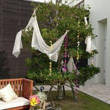木もかわいく飾ってもらいました!