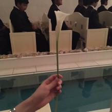 新郎へ来場者から祝福を託す花を