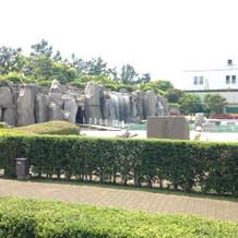 ホテルの庭でも前撮りが出来ます