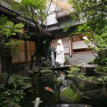 鯉の泳ぐ中庭