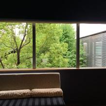 窓から緑が!
