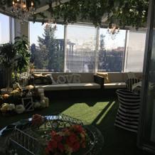 緑いっぱいの室内ガーデン