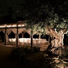 夜の庭園も雰囲気があって素敵です。