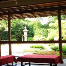 和の庭園①