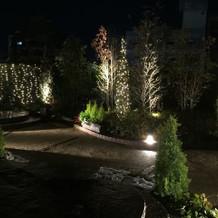 夜のガーデン  照明がかわいい