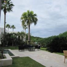 披露宴会場の庭