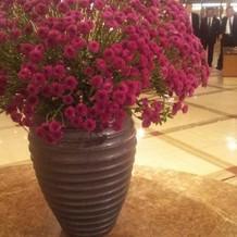 綺麗な廊下の装花