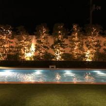 庭のプール。