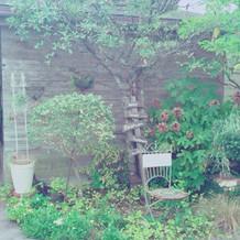 ガーデンだけを写真に撮ってしまう程綺麗!