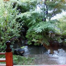 鶴の間の窓の外には池