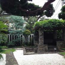 お庭 藤棚と池