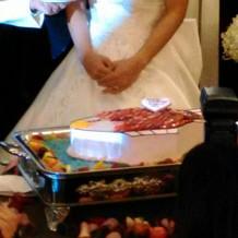 生ケーキの入刀