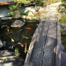 手入れが行き届いた庭。鯉がいます