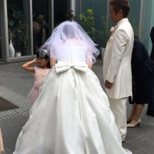 後ろ姿が可愛いシンプルなドレスです。