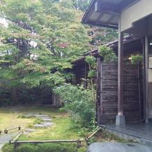 堯心亭さんのお庭。