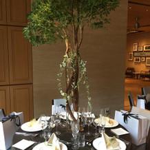 基本的なプラン内でこんな木も置けます。