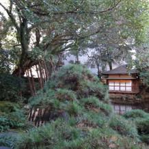 趣のある日本庭園