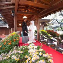 11月の菊祭り時のお太鼓橋