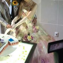 カラードレスは提携外のショップの物