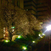 ホテル早咲きの桜