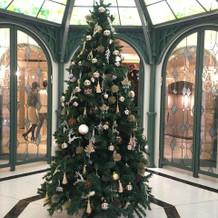 入口のクリスマスツリー。