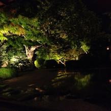 雨による水溜りに景色が映る