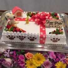 大好きなスヌーピーのケーキに大満足です