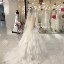 種類が多くて理想のドレスに出会えました。