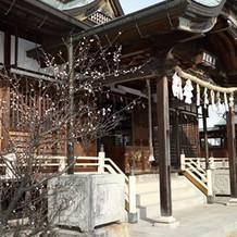 神殿横の庭園