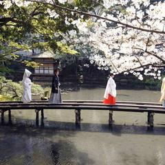 桜に見守られて皆様のもとへ