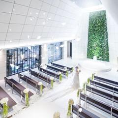 天井高は生演奏が響くよう高めの6mで、一筋の光が幻想的な空間。