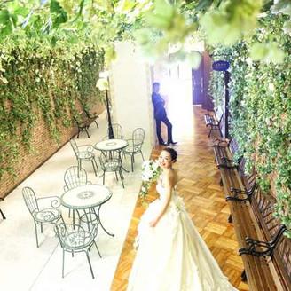 緑のトンネルのガーデンコート。前撮りではこんなお写真撮影も可能です